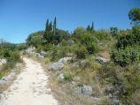 Staré Seline a příroda - Cesta.jpg